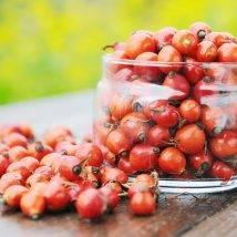 میوه نسترن ۲۰۰ گرمی عطارین
