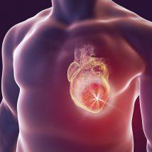 معجون قلب یک لیتری عطارین