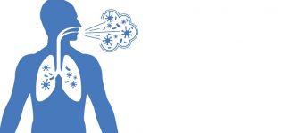 نرم کردن سینه به کمک گیاه دارویی