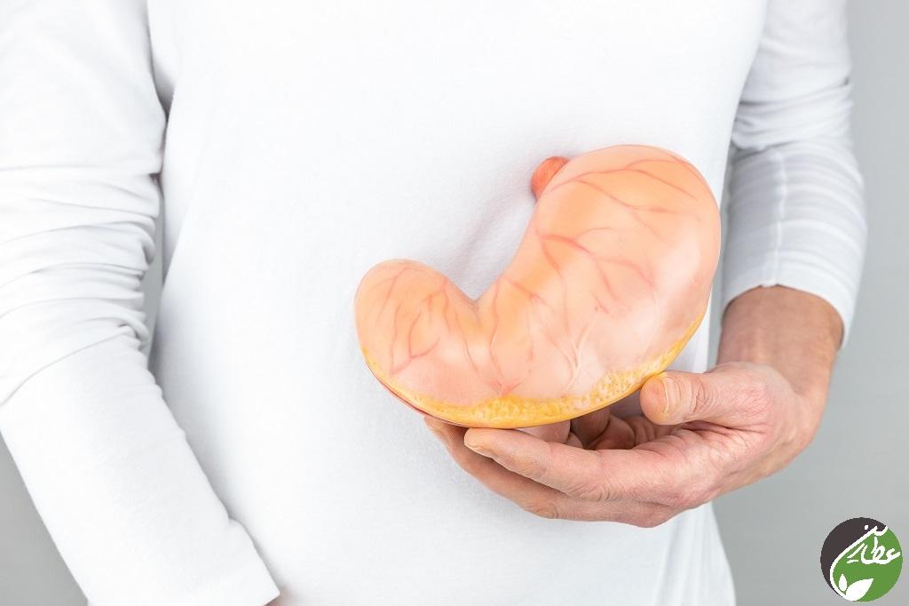 قارچ داخل معده و درمان به کمک طب سنتی