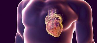 درمان تپش قلب به کمک طب سنتی و داروی گیاهی