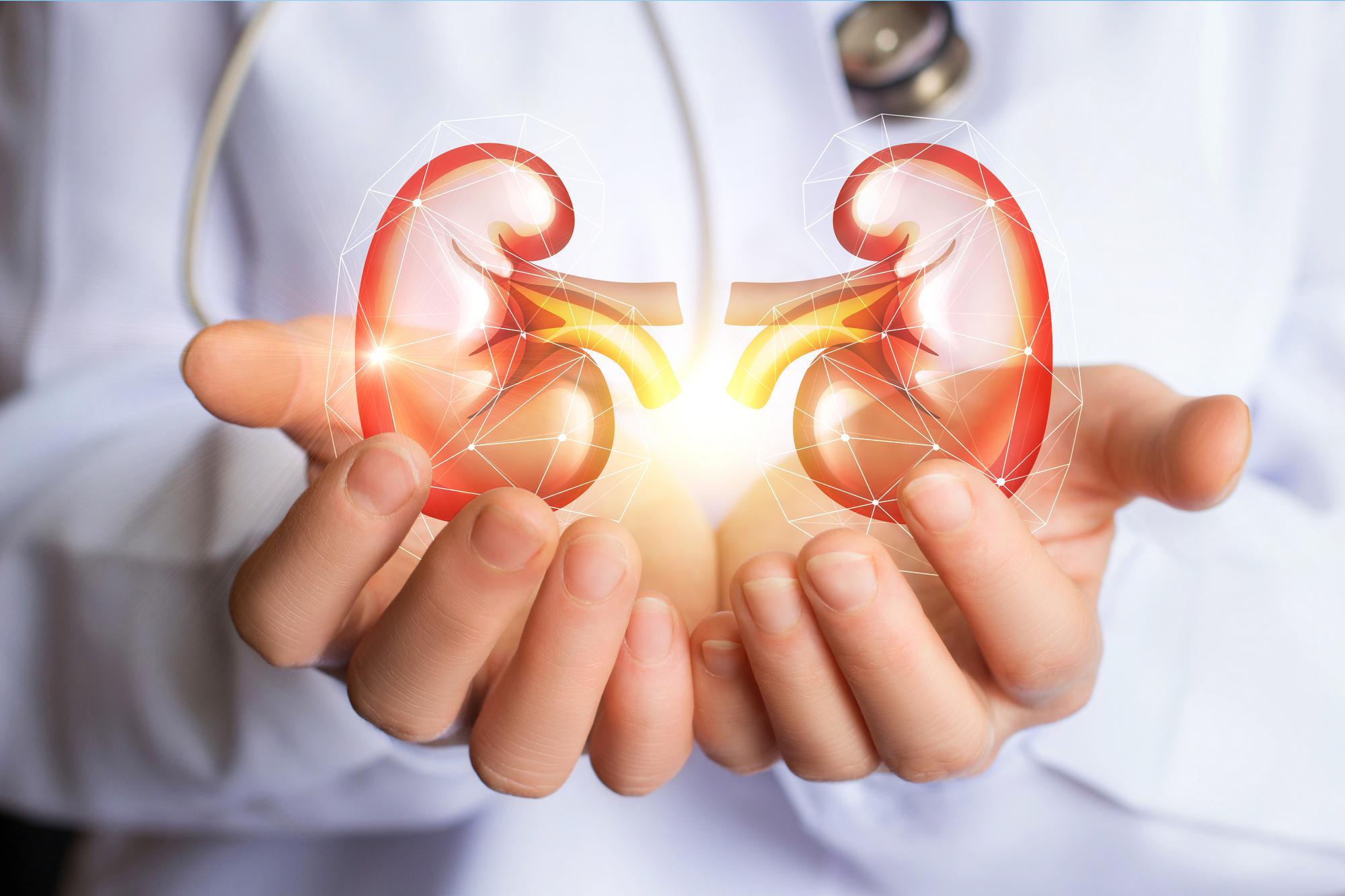 درمان تنبلی کلیه از عفونت به کمک طب سنتی