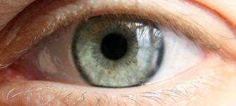 خوراکی های مفید برای ساختمان چشم