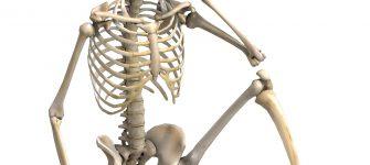 غذاهای مفید و مضر برای استخوان