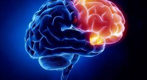 نسخه های گیاهی تقویت اعصاب با طب سنتی
