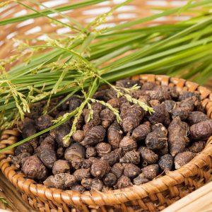 سعد کوفی 80 گرمی عطارین