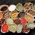 درمان زخم پستان با گیاهان دارویی