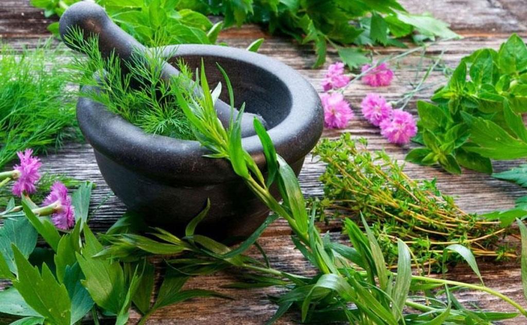 درمان ورم قدکش یا خیارک با طب سنتی