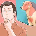 چطور علائم ویروس کرونا را در سگ به راحتی تشخیص دهیم؟