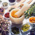 رادیو عطارین | گیاه درمانی و لزوم بازگشت به آن