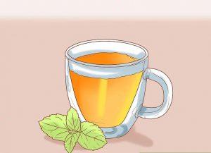 درمان های گیاهی تبخال