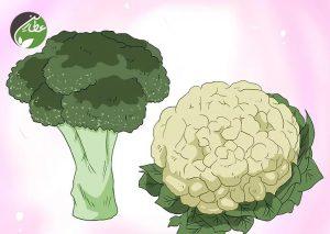 غذاهای سالم مصرف کنید