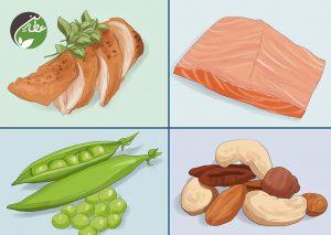 پروتئین بیشتر بخورید