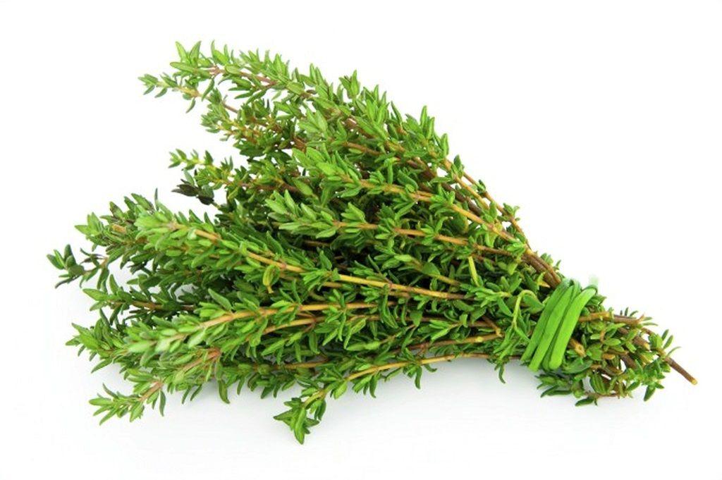 تا چه میزان در خصوص گیاه دارویی آویشن آشنایی دارید؟
