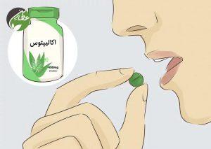 مصرف مکمل اکالیپتوس