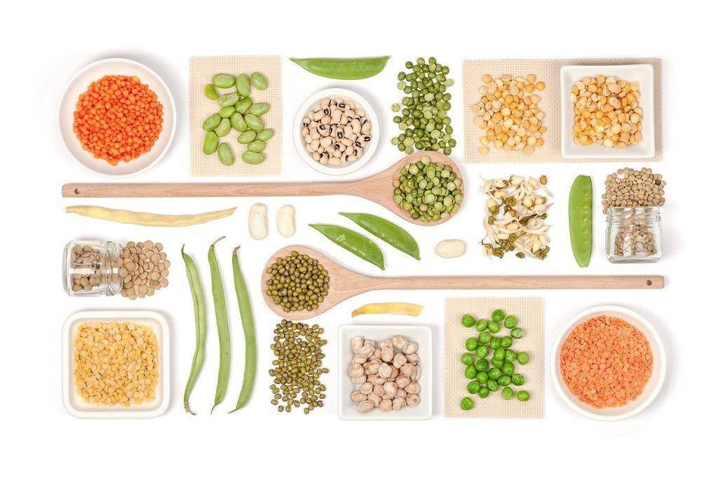 لطفا دلایل کامل گیاه خواری را بدانید