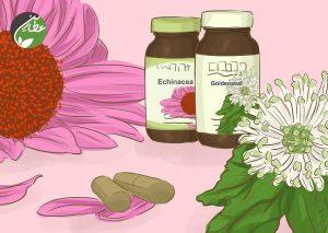 پاکسازی سیستم لنفاوی با گیاهان دارویی