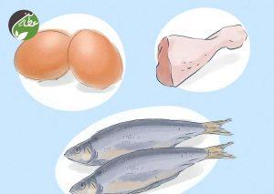 رژیم غذایی متنوع و متعادل انتخاب کنید