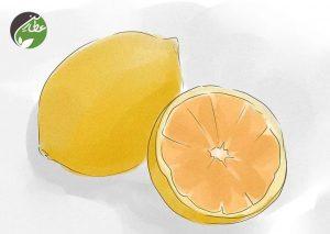 کاهش استرس با میوه های تازه
