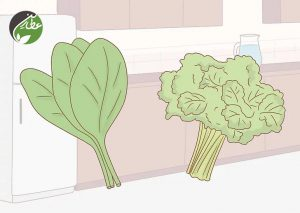 سلامت مغز با مصرف سبزیجات