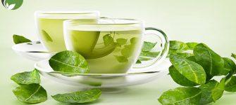 شش دلیل برای اینکه چای سبز بیشتری بنوشیم