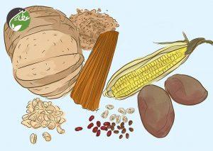 کاهش متابولیسم با مصرف کربوهیدارت ها