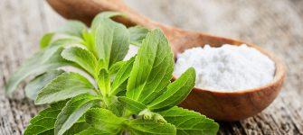 آشنایی با گیاه شیرین برگ شیرین کننده طبیعی و بدون کالری