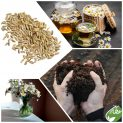 پکیج کاشت گیاه دارویی بابونه کامومیل ( آلمانی )