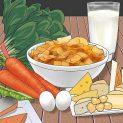چگونه برای کاهش وزن متابولیسم بدن را بالا ببریم؟ (قسمت اول: از طریق رژیم غذایی)