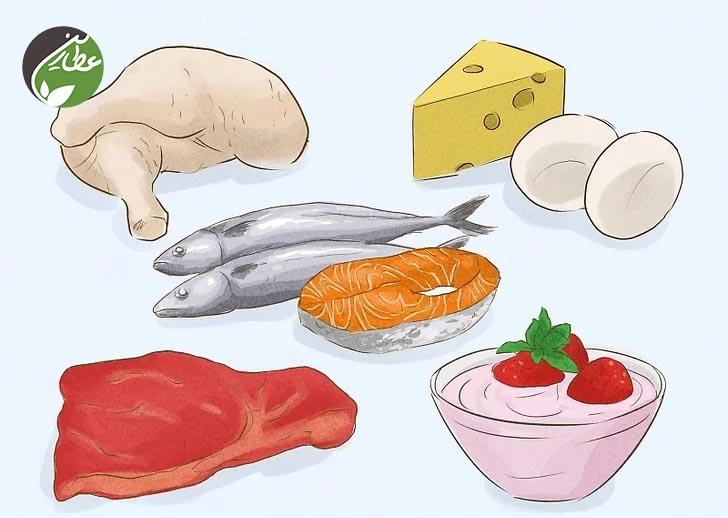 غذاهای حاوی پروتیئن